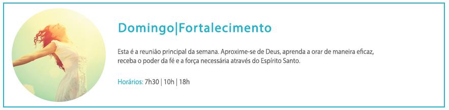 New_Website_Timetable_PT_Domingo