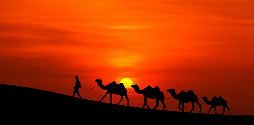 Enfrentando o deserto