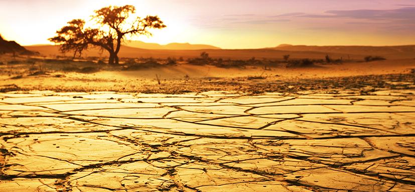 Próximos 2 anos podem ser os mais quentes já registrados no mundo