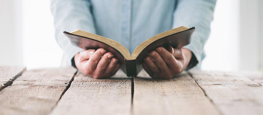 180 Day Bible Reading Plan - Old Testament