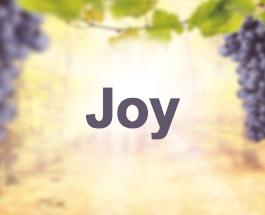 9 Sundays of the Fruit of the Holy Spirit - Joy