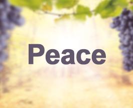 9 Sundays of the Fruit of the Holy Spirit - Peace