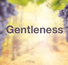 9 Sundays of the Fruit of the Holy Spirit - Gentleness