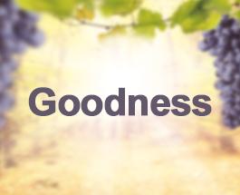 9 Sundays of the Fruit of the Holy Spirit - Goodness